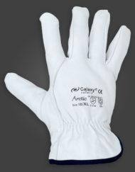 Galaxy Arctic 256